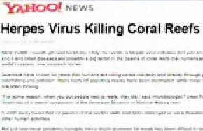 Colbert Report - Coral Reef Threat Down